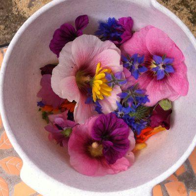 Blüten für Blütensalz