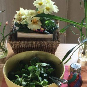 Blumen und  Feldsalat