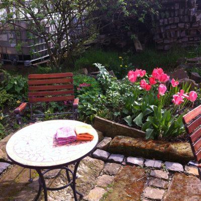 Hurra, endlich Tulpen im Garten