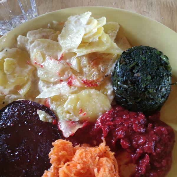 Gratin, rote Bete, Sosse, Möhrensalat und Brennessel-Puks.