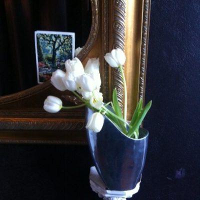 nobel: weiße Tulpen im  Eingang